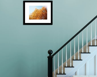 IN STOCK Autumn Colors, Leaves Turning Yellow and Gold and Orange, Nature Home Decor Wall Art 5x7 8x10 Fine Art Photograph