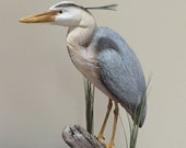 Blue Heron, hand carved Heron, carved Heron, bird carving