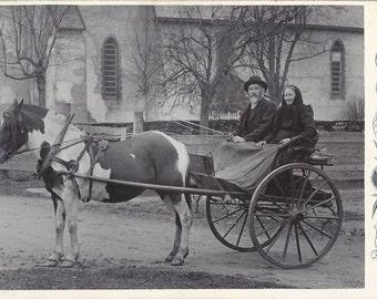 Norwegian Pinto - Antique 1890s Couple, Horse and Carriole Albumen Print Cabinet Card Photograph