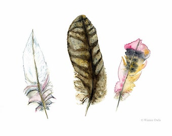 Feathers Watercolour painting, Feather Print, Nature Wall Art, 8 x 10 or 5 x 7 Print, Wildlife Decor