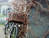 Bike Photography, Bicycle Wall Art, Street Print, Travel, Amsterdam Photography, Bike Art, Slate Blue, Street Wall Art, Rustic Photography