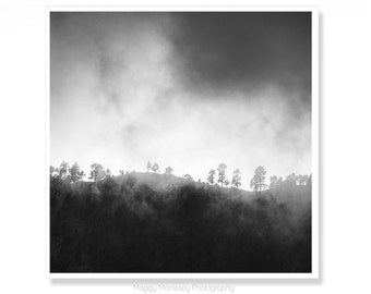 Mist Mountains, Forest Photograph, Black and White Nature Photography, Fits IKEA RIBBA