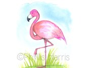 Pink Flamingo Wall Art Print - Offered with or without quote