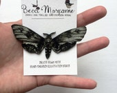 Moth Brooch // Illustrated Insect Jewellery -- Death Hawk Moth