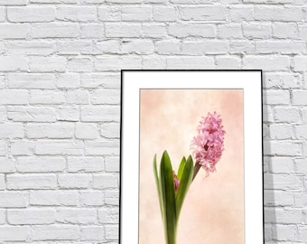 Pink Hyacinth Photograph, Floral Art Print, Still Life Photo, Painterly Wall Art Print, Spring Wall Decor Print