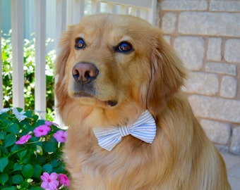Dog Bow tie, Bow for dogs, bow tie for pets, bowties, Preppy bow tie for dogs, bow tie for dog collars