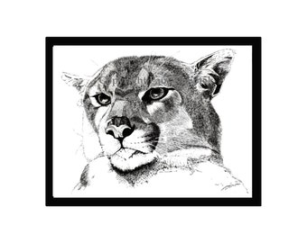 Cougar Pen and Ink Print, Puma, Mountain Lion