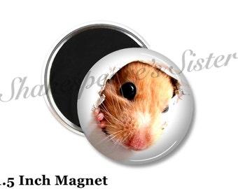 Hamster Magnet - Fridge Magnet - Funny Magnet - 1.5 Inch Magnet - Kitchen Magnet