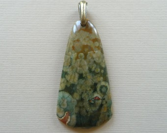 Rhyolite Rainforest Jasper Natural Stone Pendant