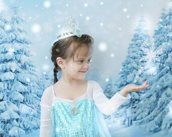 Winter Wonderland Backdrop - Winter Backdrop - Winter Tree Backdrop - Snow Backdrop- Holiday Background (FD5021)
