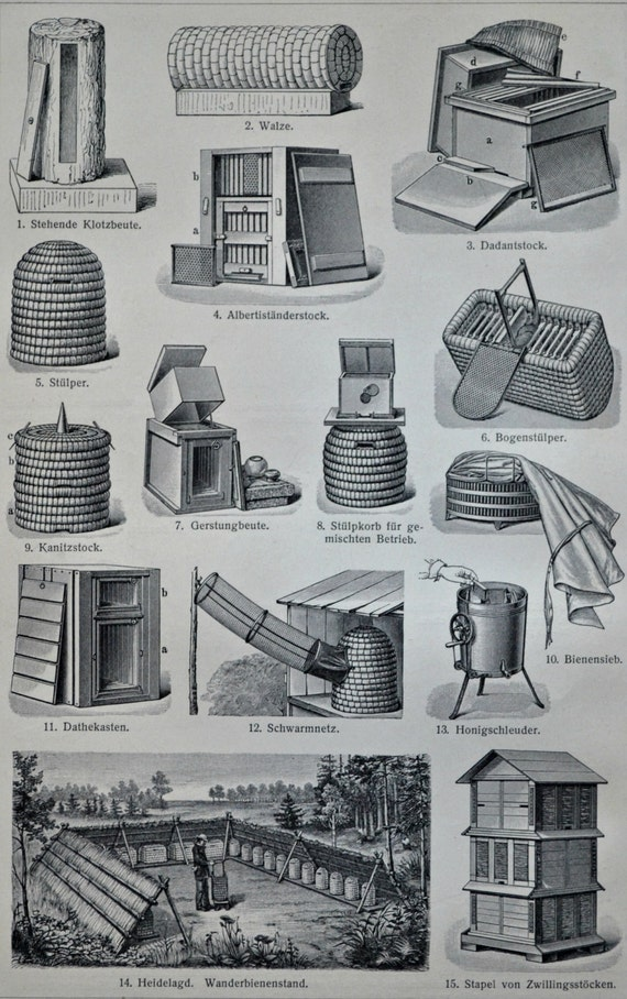 Beekeeping print. Apiculture. Honey. Bees.  Old book plate, 1904. Antique illustration. 112 years lithograph. 6x9'2 inches.