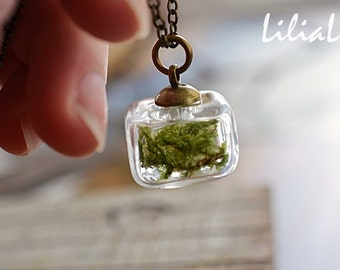 Real moss necklace Terrarium moss necklace Woodland necklace Real plant necklace Glass vial necklace Real moss jewelry Nature lover gift