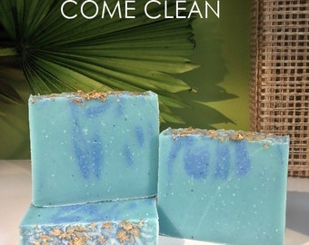 Come Clean Handmade Cold Process Artisan Soap - Vegan