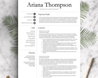 Classic, Professional Resume Template For Word And Pages (US Letter U0026 A4) 1  3 Page Resume