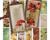 "75% OFF SALE Digital collage sheet Autumn 1x2"" Domino Image PR018 Printable Download 1x2 inch Rectangle Glass Pendant Resin Digital Image"