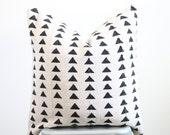 Katelyn Custom Listing - 2 20x20 Pillows
