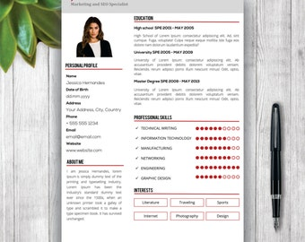 clean resume template cv template modern resume template curriculum vitae resume format