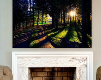 Walk in the Woods, Picture on Canvas, Photo on Canvas, Sunset Picture, canvas wall art, Gallery Wrapped Canvas, Canvas Wall Decor, DB1604001