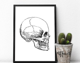 Black Skull art, Skull Designs, Science, Anatomy posters, Poster, Wall Designs, Large Wall Art, Trendy-art, gifts for med students, framed