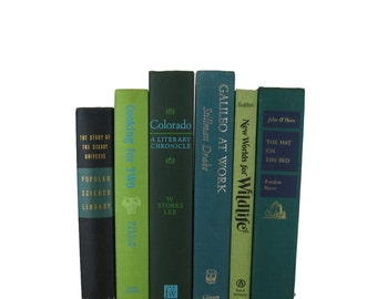 Green Blue Books , Vintage Books , Books , Decorative Books ,  Wedding Decor ,  Photo Prop , Instant Library , Shabby Chic Wedding