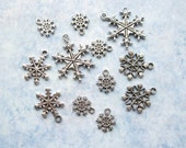 SALE - Snowflake Charm Collection in Silver Tone - C2296
