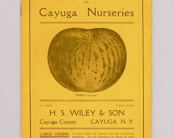 1906 Vintage Nursery Trade Catalog Trees Plants Schrubs Cayuga Nurseries, H S Wiley & Son, Cayuga, N.Y. Vegetables Fruits Flowers Rare