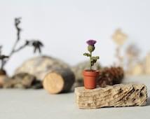 Thistle in a pot miniature crochet flower plant Scottish thistle dollhouse fairy garden collectable Scotland's national flower