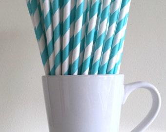Robins Egg Blue Paper Straws Aqua Turquoise Blue Striped Party Supplies Party Decor Bar Cart Accessories Cake Pop Sticks Graduation