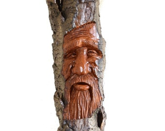 2016 Alaskan Cottonwood Bark Wood Spirit #15
