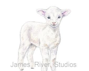Lamb Art Lamb Painting Lamb Print. Lamb Watercolor Painting Animal Watercolor Barn Animal Farm Sheep Art Print Baby Sheep Baby Lamb Nursery.
