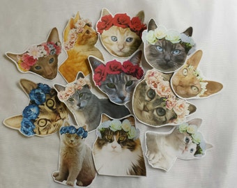 Flower Crown Cat Stickers