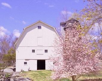 White Barn and Magnolia