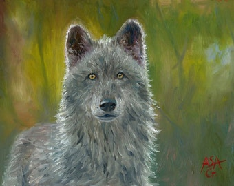 Grey Wolf Painting, 5x7 Inches, Original Oil Painting, Oil on Masonite Board, Wildlife Art