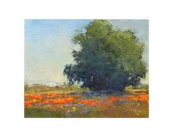 Poppies original Landscape oil painting impressionist plein air landscape palette knife texture  by Don Bishop
