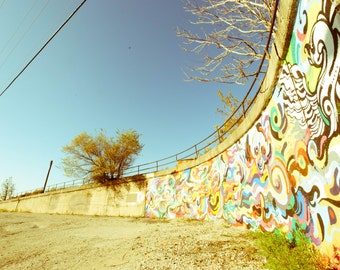 Chicago Photography Art Print, PIlsen Graffiti #2
