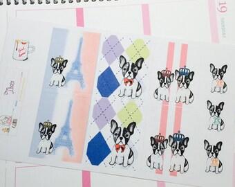 Diva Puppy: French Bulldog
