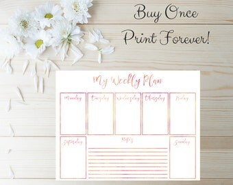 2017 Planner Pages - 2017 Planner Agenda - Printable Planner Inserts - Daily Planner - Weekly Planner - 2017 Monthly Planner - Planner Kit