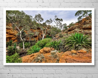 Desert Photography, australia scenery, outback wall art, wall decor, orange and green, landscape photography, home decor matted print