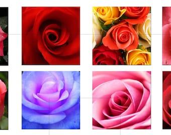 "Digital Collage Sheet, Rose, Flower, Valentines, Love, Printable Downloads, Square Tiles, Scrapbooking, 1.5"", 1 inch, 20mm, dcs057"