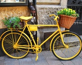 Fine Art Color Photograph, Yellow Bicycle with Flowers, Cracow, Poland,