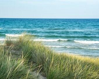 Lake Michigan and WIld Grass in Ludington, Michigan 12x18 Photo