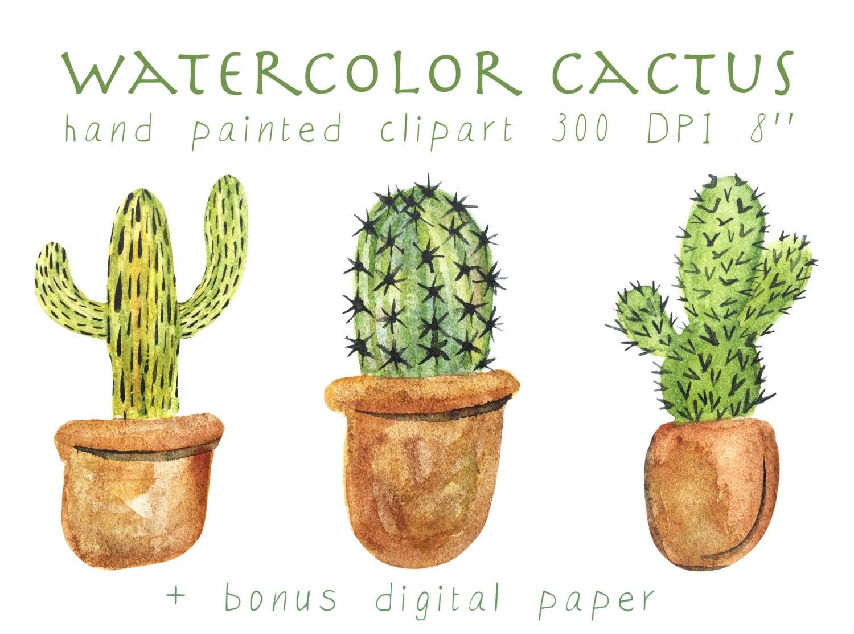 Cactus Clipart Watercolor Cactus Watercolor Cacti Clipart Succulent Wedding Invitation Cactus