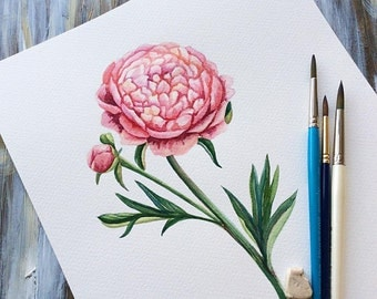 Original watercolor painting - Peony