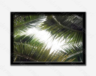 Palm leafs digital print Palm leaves print Palm leafs print Palm leaf prints Palm tree wall print Palm printable art Leafs palm printable