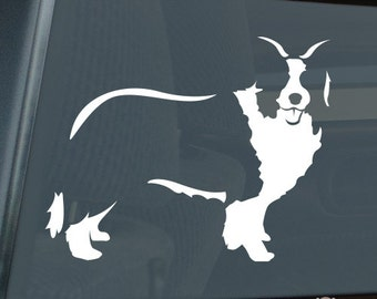 Border Collie Die Cut Vinyl Sticker v2 sheep dog - 466