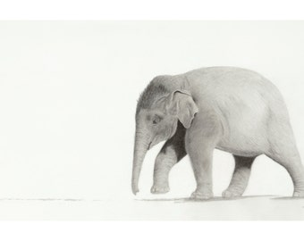 Wait for Me Please.... Set of 6 Elephant Note Cards with Envelopes by artist Lesley Galton