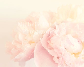 Styled stock photography, blog photography, photography stock, peony, dreamy, ethereal, flowers, pink, soft, pastel, background, nature,