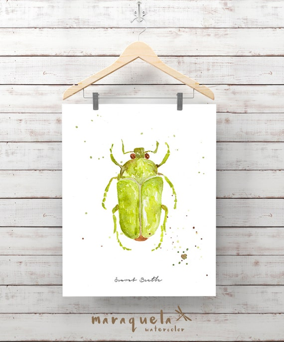 Green SCARAB Beetle Illustration watercolor - Art print insects decor, wall room unique gift ideas, scarab,, insects watercolor, painting