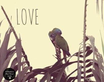 Nature Photography | Love | 5 X 7 magnet print | Original Photographs