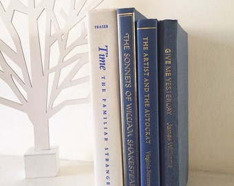 Home décor books by colour / Instant library - Blue